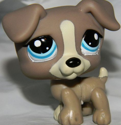 LITTLEST PET SHOP-Jack Russell Terrier #1832 Puppy Dog Gray Blue Eyes