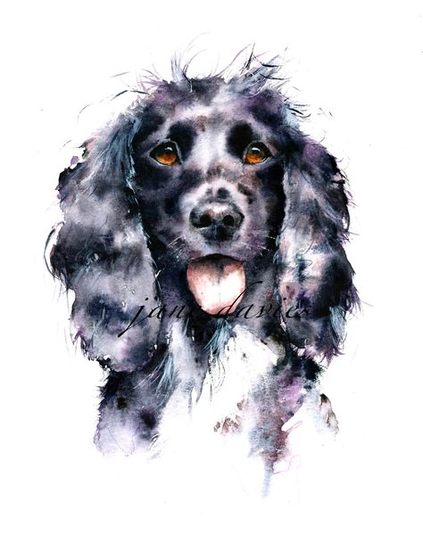 Pet Portrait Painting Of A Cocker Spaniel By Watercolour Artist