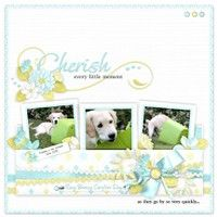 A Project by Mary Fran from our Scrapbooking Gallery originally submitted 08/02/12 at 08:55 AM