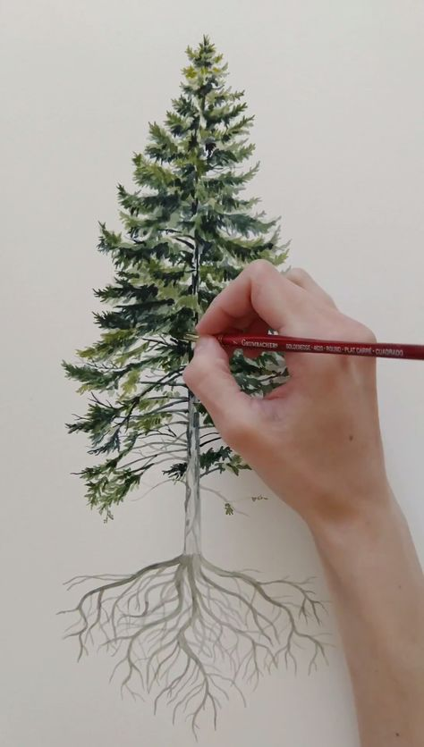 Here is the process showing how I paint my pine trees. From start to finish the time lapse shows how I start with light colors and move to dark and the detail that goes into a watercolor art piece.   Check out the link to see the finished art.   #watercolorart #watercolourartist #watercolour #watercolor #naturelover #nature #natureartist #paintingprocess #painting #timelapse #artprocess #originalpainting
