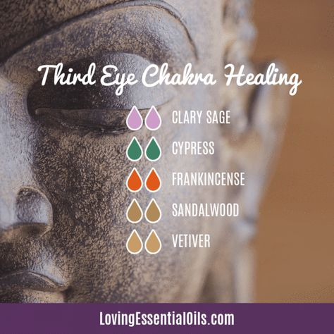 10 Essential Oil Blends For A Great Smelling Home Essential Oils Guide, Doterra Essential Oils, Young Living Essential Oils, Essential Oils For Chakras, Essential Oil Combinations, Intuition, How To Treat Anxiety, Plant Therapy, Essential Oil Diffuser Blends