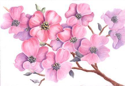 Bluten Malen Mit Aquarellfarben Blumen Malen Blumen Malen Acryl