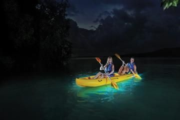 Grand Caymans Only Glass Bottom Kayak Bioluminescence Bay Tour Come Experience One Of Caymans Most Unique Tours To Book Call 345 Kayaking Kayak Tours Vieques