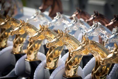 لوحة مودرن حصان سفير ارت للديكور Horses Running Horses Animals