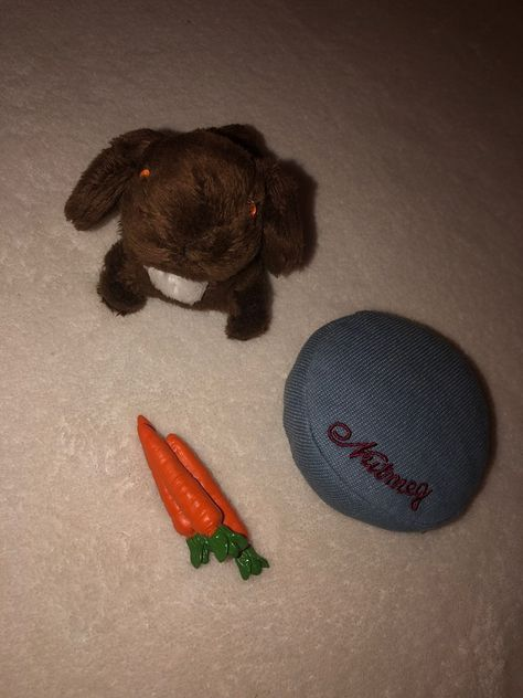 American Girl Julie/'s PET BUNNY NUTMEG Set With Basket Pillow Carrots New In Box
