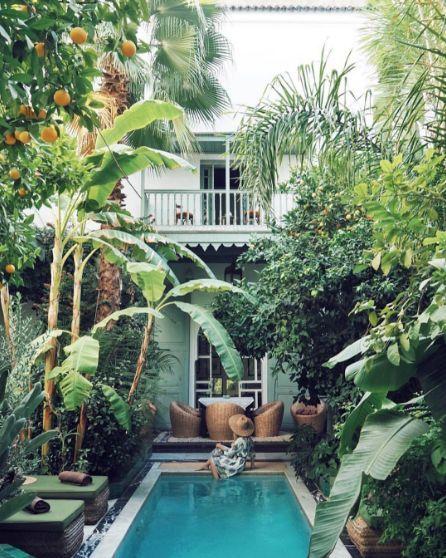 53 Minimalist Small Pool Design With Beautiful Garden Inside Roundecor Tropical Backyard Landscaping Small Pool Design Tropical Backyard