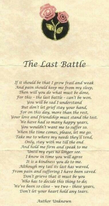 The Prayer Of Euthanasia Pet To Owner Dog Poems Dog Quotes Pet Loss Grief