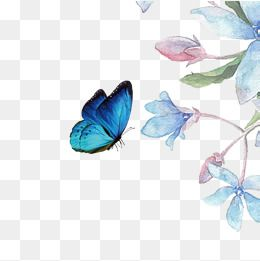 Beautiful Flowers Beautiful Flower Butterfly Png Transparent Clipart Image And Psd File For Free Download Pink Flowers Background Flower Png Images Flower Drawing