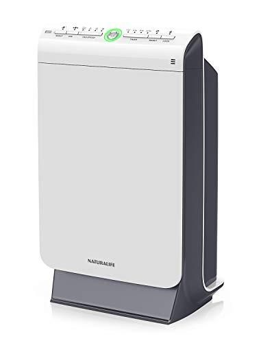 Naturalife True Hepa Air Purifier 4 Stage Filtration And Ionization System For Large Rooms Up To 376 Sq Hepa Air Purifier True Hepa Air Purifier Air Purifier