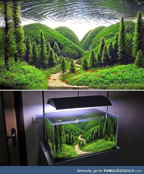 Terrarium Concept<<<< excuse me, that's an ~aquarium~ Planted Aquarium, Aquarium Terrarium, Aquarium Fish Tank, Aquarium Aquascape, Fish Tank Terrarium, Freshwater Aquarium Fish, Terrarium Plants, Aquarium Landscape, Nature Aquarium