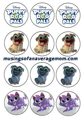 Puppy Dog Pals Invitations Dog Birthday Cupcakes Dogs And Puppies Dog Birthday