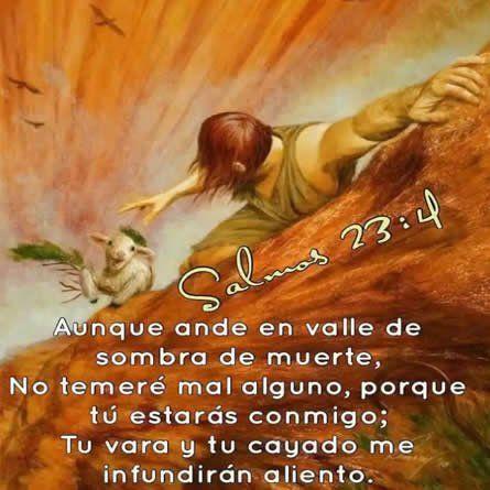 Estas Imagenes Con Mensajes Cristianos Son Especiales Ya Que Llevan Consigo Palabras Poderosas Important Versos Cristianos Frases De Salmos Mensajes Cristianos