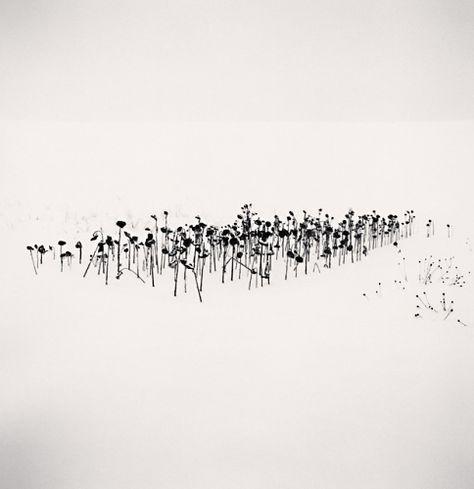 Michael Kenna Photographie Minimaliste Paysage Noir Et