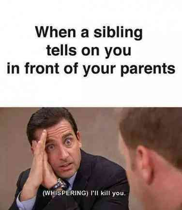20 Funny Memes Anyone With Siblings Will Relate To Especially If You Re Used To Being The Middle Child Midd Siblings Funny Sibling Memes Siblings Day Quotes