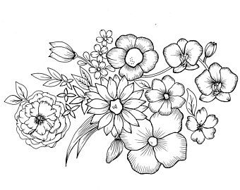 Wild Flowers Pdf Coloring Page Etsy Coloring Pages Flower Coloring Pages Flower Drawing