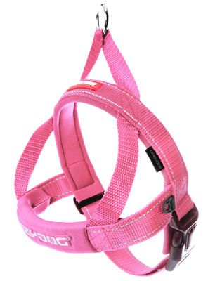 Ezydog Quick Fit Harness Pink X Small In 2020 Dog Phone Dingo
