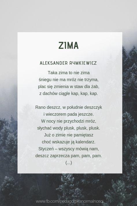 Pin Na Zima