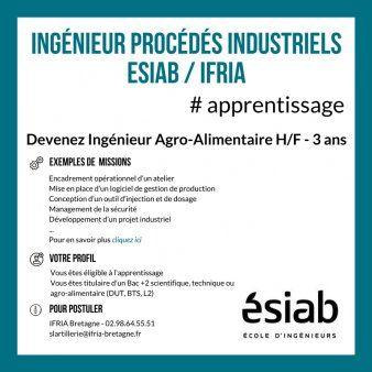 Formation D Ingenieurs Procedes Industriels Par Apprentissage Esiab Ifria Quimper Avec L Ifria Bretagn Apprentissage Ingenieur Du Son Insertion Professionnelle