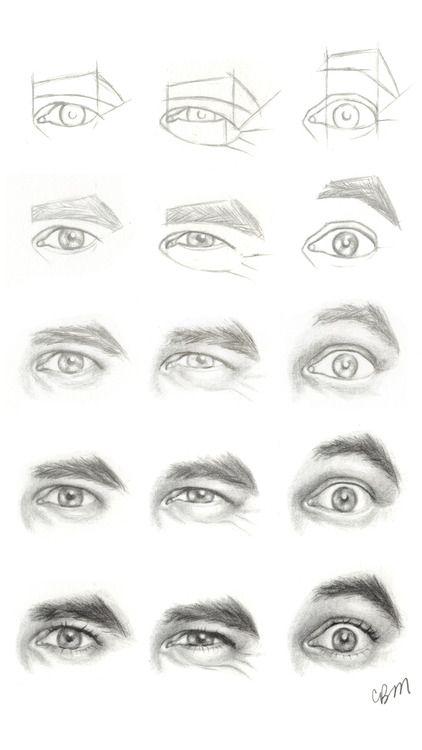 Http Pencilpushingenthusiast Tumblr Com Post 25802016247 Drawing Tutorial Eyes Anterior View Drawings Drawing Tutorial Eye Drawing