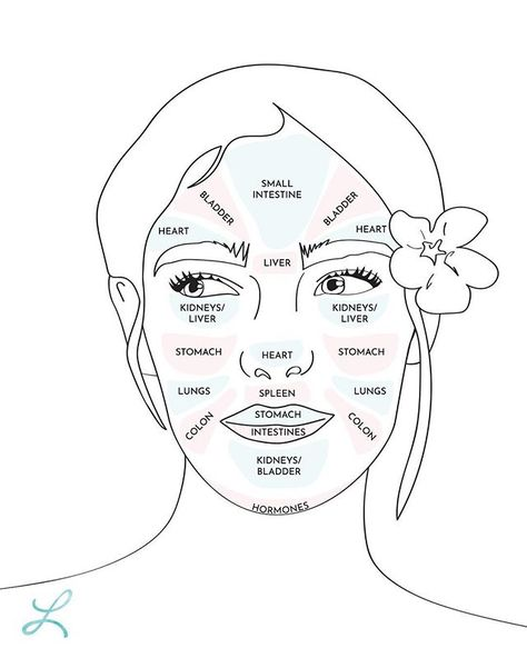 List Of Pinterest Jawline Acne Causes Face Mapping Pictures