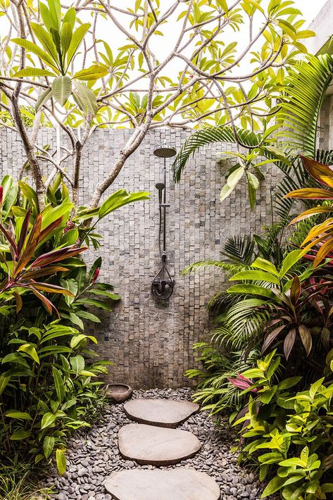 A Tropical Garden: An Oasis In the midst of the Island of the Gods