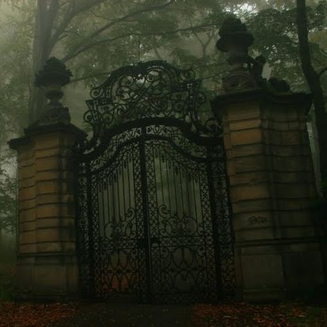 Gothic the-world-of-the-beautiful-creatures-series. an entrance like this, beautiful. but more welcoming for sure Beautiful Creatures Series, By Any Means Necessary, Slytherin Aesthetic, Iron Gates, Gothic Architecture, Abandoned Places, Belle Photo, Draco Malfoy, Cemetery