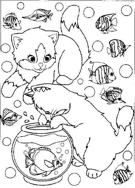 Katze001 Gif Okul Oncesi Etkinligi Yukleyen Ogretmenimiz
