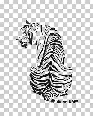 White Tiger Black And White Drawing Tiger Pattern Tiger Illustration Png Clipart Animal Drawings White Painting White Horse