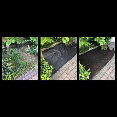Unkraut Im Gartenbeet Wird Unterrdruckt Grune Landschaft Garten Anlegen Gartenbeet