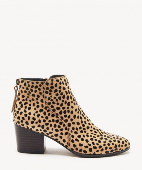 sole society leopard booties