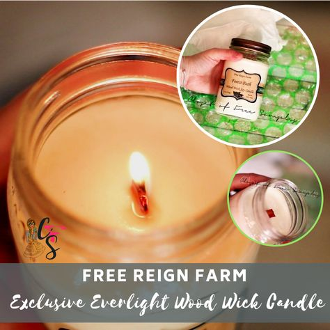 Free Reign Farm Exclusive Everlight Wood Wick Candle Review I Am