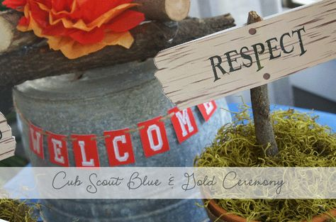 Cub Scout Blue & Gold Ceremony Ideas from AmysPartyIdeas.com