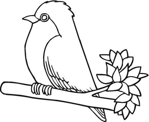 99 Robin Bird Coloring Pages Enjoy Coloring Passaro