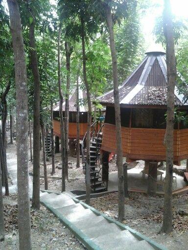 Jungle huts. 02142015 #JKlove