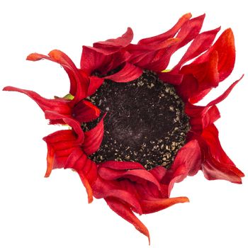 Red Sunflower Napkin Ring Red Sunflowers Sunflower Napkin Ring Sunflower