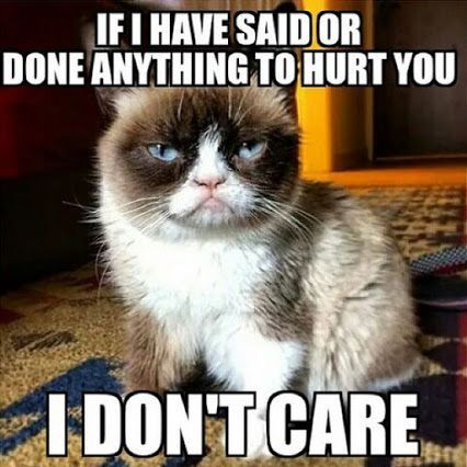 A Garfield Garfield Cat Funny Animal Grumpy Cat Meme Angry Cat Memes Funny Grumpy Cat Memes