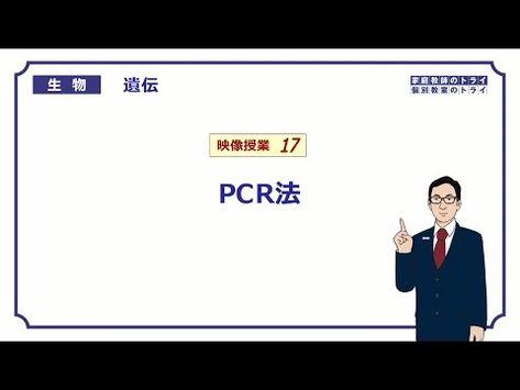 【高校生物】 遺伝17 PCR法(20分)