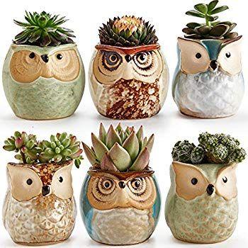 Amazon Com Buho Blanco Maceta De Ceramica Juego De 3 Mini Suculentas Macetas Con Bandeja De Bambu S Cactus Plant Pots Succulent Pots Succulents In Containers