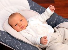 Consumer Reports Buying Guide - Bouncer Seats