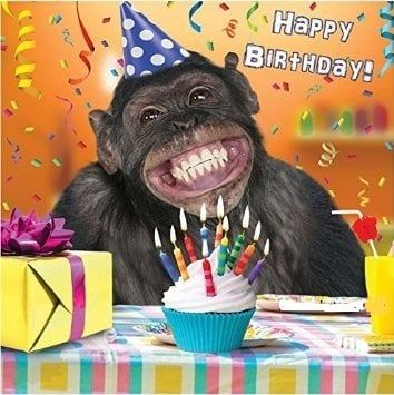 Monkey Smiling Funny Images For Your Love Happy Birthday Pictures Happy Birthday Animals Happy Birthday Funny