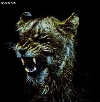 Whatsapp Dp Iamhja Big Cats Art Best Profile Pictures Cute Profile Pictures