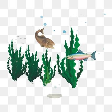 Cute Fish Ocean Water Animal Png And Vector With Transparent Background For Free Download Graphic Design Background Templates Fish Graphic Cute Fish