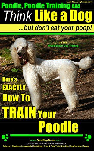 Poodle Poodle Training Aaa Akc Think Like A Dog But Do Https