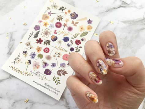 Pressed Dried Flowers Design Water Slide Nail Decalsnail