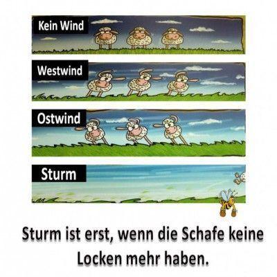 Sturm Spruche Lustig Storm Sayings Lustig Sie Sind An Der Lustig Spruche Sturm In 2020 Lustig Sturm Lustige Bilder