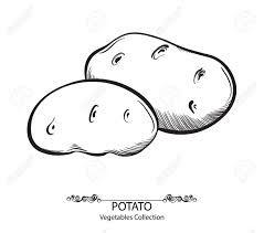 Black And White Potato Clipart Google Search Clipart Black And