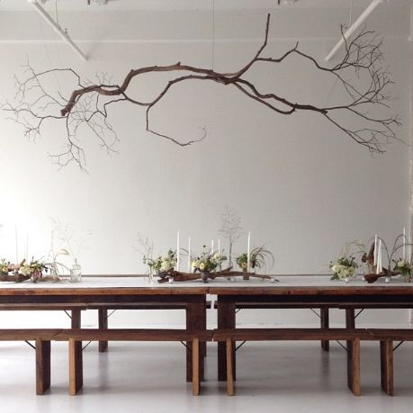 25 Amazing DIY Branches Chandeliers  Ceiling of entry into the ' root' Cellar?