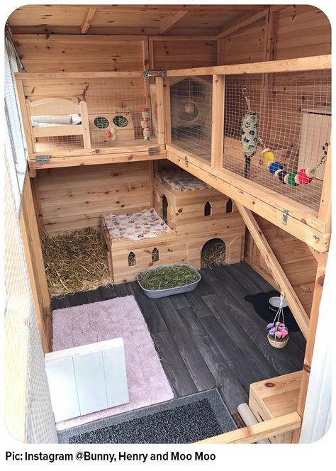 New Pet Rabbit Indoor Bunny Cages Ideas - Rabbit Hutches: Outdoor & Indoor Rabbit Hutche Models Bunny Sheds, Rabbit Shed, House Rabbit, Pet Rabbit, Rabbit Cage Diy, Diy Bunny Cage, Rabbit Run, Rabbit Farm, Pet Bunny Rabbits
