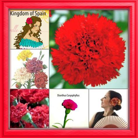 National Flower Series Southern Europe 1 Kingdom Of Spain Dianthus Caryophyllus Carnation Carnations Flowers Dianthus Caryophyllus