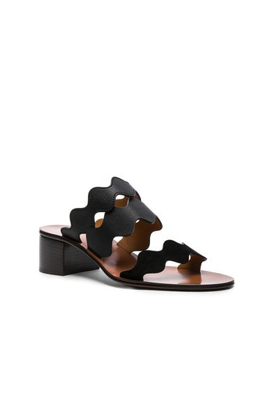 Azul Claro Sapatos Mule – MyaHaas